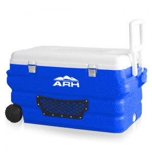 Cooler with Handle...
